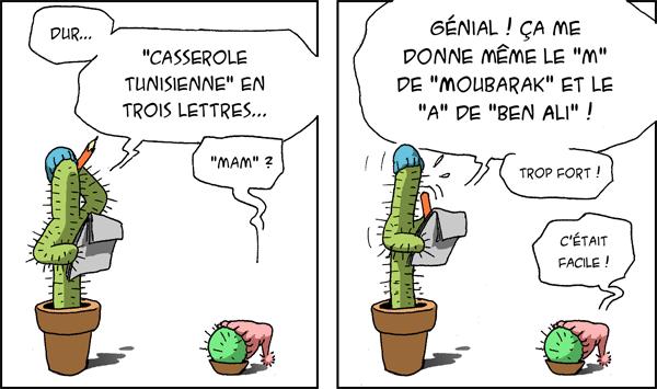 Album - Cactusalités
