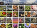 Recherche par mots-clés, tarifs, site Vosges-Photos, Michel Laurent et Martine Schnoering
