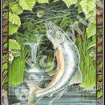 Pavés de saumon à l'anis vert et citrons confits...