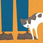Pourquoi les chats ronronnent-ils ? grand concours Google 2012 #1