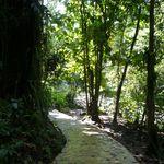 La cascade des écrevisses, Guadeloupe.