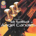 Galileo Y Su Banda - Tributo A La Salsa De Angel Canales.rar (66.29 MB)