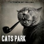 Cats Park - A Taste of Heaven (2013) [Alternative , Indie]