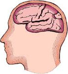 Alzheimers'eye test: testez votre cerveau
