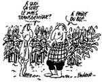 OGM : CAP 21 dénonce l'attitude scandaleuse des autorités françaises