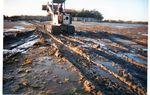 île aux oiseaux : la Ville de La Teste de Buch invente la pêche à pied au bulldozer !