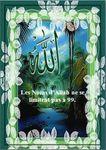Télécharger : Les Noms d'Allah ne se limitent pas à 99.. [Pdf; word]