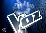 Audiences Europe mercredi 19 Décembre 2012: TF1 en tête, The Voice termine sur un carton en Espagne