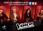 The Voice, audiences au top sur TF1