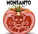 Tous Assis Contre Monsanto!