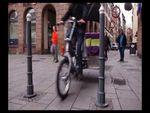 Strasbourg en vélo-calèche