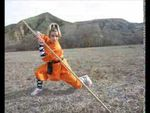 The Shaolin Temple The 36 Chamber Of Shaolin 少林三十六房