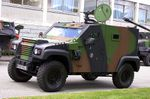 France Adds 200 Armored Vehicles to Panhard Buy