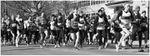 Course populaire de LaSalle - Dimanche 29 mars 2015 - LaSalle, QC, CAN - 10km - 33'58''