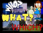 Lección Nº 75 - El uso de WHO-WHAT-WHICH