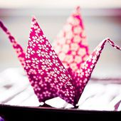 'i do' it yourself: diy project : origami paper crane
