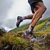 Running: Trail de le Longane 2015: audaces fortuna iuvat