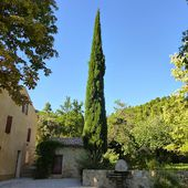 A Manosque, sur le chemin de la Thomassine ...