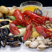 virginia-beach-seafood-fishing - Fine and Family Dining in Virginia Beach