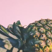 pineapples-io: For the love of pineappl...