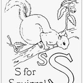 Hudson's Holidays - Designer Shirley Hudson: Squirrel freebie