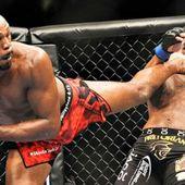 Ministère des Sport: Légalisation du MMA en France (Mixed Martial Art)