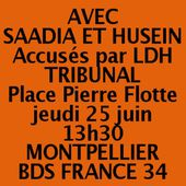 COMITE BDS FRANCE 34