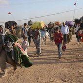 Le discours sur les réfugiés syriens : un analyseur