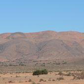 Cinéma, site patrimonial et Marrakech