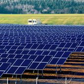 Trianel commissions 10-MW solar park in Germany - SeeNews Renewables