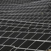 Coal India to launch 800-MW PV auction - report - SeeNews Renewables