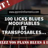 100 Licks blues modifiables et transposables - 2016