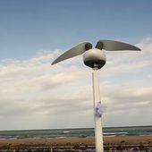 Le biomimétisme au service de l'écologie : cette éolienne imite le vol du colibri