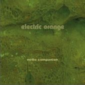 netto companion, by electric orange