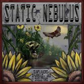 Sunflowers, Sparrows and Skeletons, by Static Nebulus