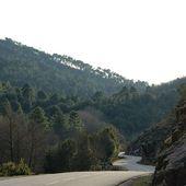 Humour Lorrain: Voyage en Corse