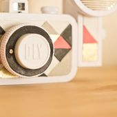 DIY: La sardina by Lomography | Cococerise - le blog