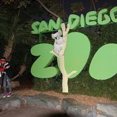 Content from Besuch im Zoo San Diego 10.11.2014