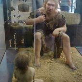 Clonage: possibilité de recréer un homme de Neandertal? - Doc DORFFER Patrick