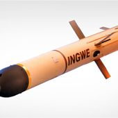 Un missile sud-africain pour Riyad ? - FOB - Forces Operations Blog
