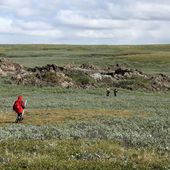 Virus et bactéries attendent le dégel dans le permafrost -- Sott.net