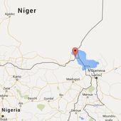 Dix combattants de Boko Haram tués dans des affrontements avec l'armée au Niger