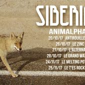 Siberian XP | Rock from Bordeaux, FR