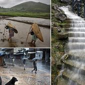 Think the weather bad's here? Spare a thought for these Indian villagers who live in the wettest place in the world with 40 FEET of rain a year