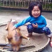 Five-year-old girl recognises missing dog in a dog meat stall