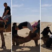Tourist faceplants sand after falling head first off of a camel