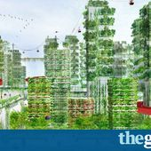 'Forest cities': the radical plan to save China from air pollution