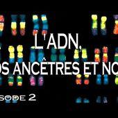 2 - L'ADN, nos ancêtres et nous [720p]