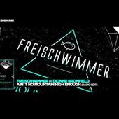 Freischwimmer ft Dionne Bromfield Ain´t No Mountain High Enough Radio Edit