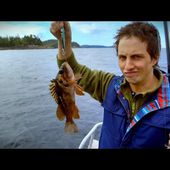 "Comedian Jonny Harris talks ""affectionately roasting"" on new show #StillStanding"